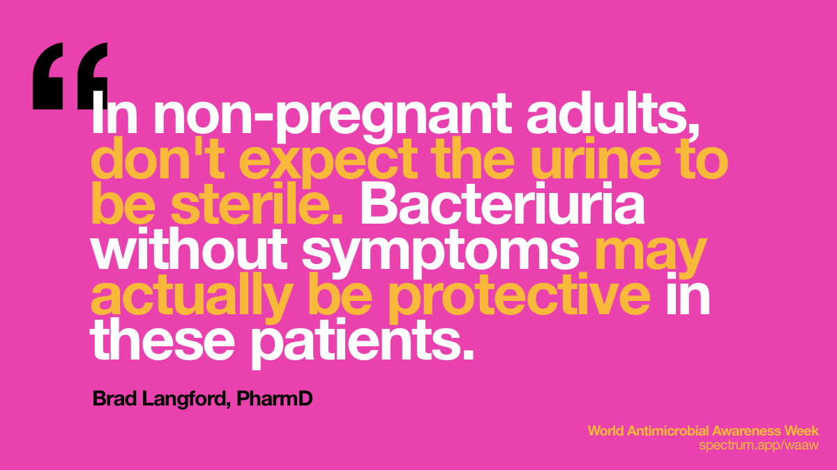 In non-pregnant   adults, don't expect the urine to be sterile. Bacteriuria without symptoms may   actually be protective in these patients.